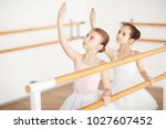 small group of little girls in... | Shutterstock . vector #1027607452