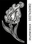 magic burning flower. doodle... | Shutterstock .eps vector #1027626082