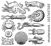 Vintage Marine Life Collection...