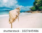 traditional asian conical...   Shutterstock . vector #1027645486
