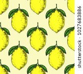 seamless lemons background.... | Shutterstock .eps vector #1027683886