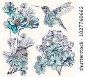 Set of vector hand drawn hummingbirds for design
