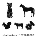horse  cow  cat  squirrel and... | Shutterstock .eps vector #1027810702