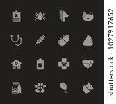 pet vet icons   gray symbol on... | Shutterstock .eps vector #1027917652