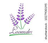 lavender logo design for... | Shutterstock .eps vector #1027930195
