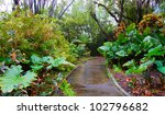 walking path through the jungle ...   Shutterstock . vector #102796682