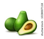 vector realistic fresh fruit... | Shutterstock .eps vector #1028007118