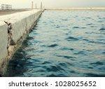 Sea Baths Edge With Ladders
