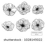 set of anemone flowers hand... | Shutterstock .eps vector #1028145022