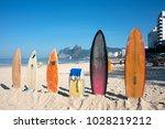 rio de janeiro  brazil   july... | Shutterstock . vector #1028219212