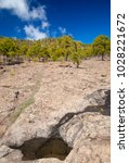 west of gran canaria  february... | Shutterstock . vector #1028221672