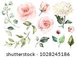 set watercolor elements of... | Shutterstock . vector #1028245186