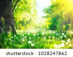spring nature scene. beautiful... | Shutterstock . vector #1028247862