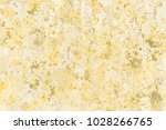 gold wet abstract paint leaks... | Shutterstock . vector #1028266765