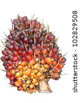 Palm Oil Fruit Isolated On A...