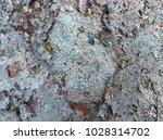iron rust  steel rust  steel... | Shutterstock . vector #1028314702