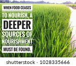 """motivational quotes """"when food...   Shutterstock . vector #1028335666"""