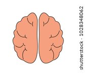 human brain front view icon.... | Shutterstock .eps vector #1028348062