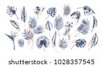bundle of tropical leaves of... | Shutterstock .eps vector #1028357545