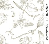 botanical seamless pattern with ... | Shutterstock .eps vector #1028358526