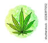 cannabis leaf  marijuana  herb  ...   Shutterstock .eps vector #1028397052