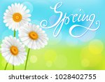 chamomiles on abstract spring...   Shutterstock .eps vector #1028402755
