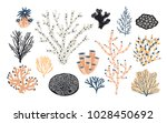 collection of various corals... | Shutterstock .eps vector #1028450692