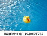 yellow rubber duck in blue... | Shutterstock . vector #1028505292