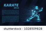 karate of particles. the karate ...   Shutterstock .eps vector #1028509828