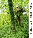 Small photo of Treehouse in Caudle Green