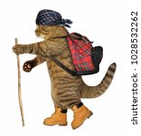 Stock photo the cat tourist in boots carries a backpack a stick is in his paw white background 1028532262