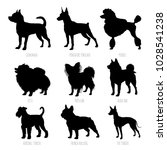 dog breeds silhouettes set.... | Shutterstock .eps vector #1028541238