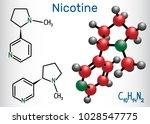 nicotine molecule  is alkaloid  ... | Shutterstock .eps vector #1028547775