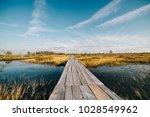 summer landscape. swamp  marsh  ... | Shutterstock . vector #1028549962