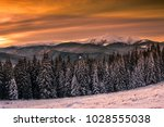 awesome snowy scenery  forest... | Shutterstock . vector #1028555038