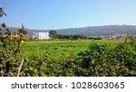 near the afife  portugal   Shutterstock . vector #1028603065