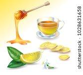 vector illustration of lemon ... | Shutterstock .eps vector #1028631658