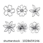 set flowers rustic and... | Shutterstock .eps vector #1028654146