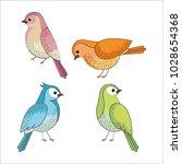 group of cute birds drawn | Shutterstock .eps vector #1028654368