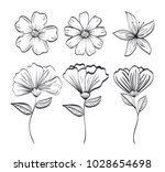 set flowers rustic and... | Shutterstock .eps vector #1028654698