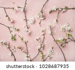 spring floral background ... | Shutterstock . vector #1028687935