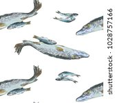 pike and small river fish... | Shutterstock . vector #1028757166