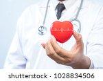 professional medical doctor... | Shutterstock . vector #1028834506