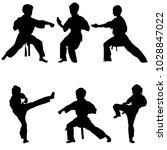 Young Karate Boys Silhouettes ...