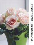 bouquet of pale pink cream...   Shutterstock . vector #1028865586