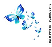 beautiful butterflies  blue... | Shutterstock .eps vector #1028891698