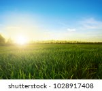 green meadow under blue sky... | Shutterstock . vector #1028917408