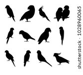 collection of parrot silhouette ... | Shutterstock .eps vector #1028960065