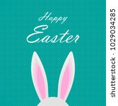 easter background with rabbit... | Shutterstock .eps vector #1029034285