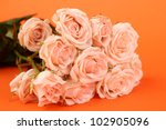 beautiful roses over orange... | Shutterstock . vector #102905096